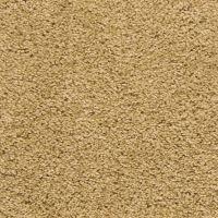 Evertouch Bcf Nylon Carpet Review