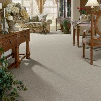 Most Durable Carpet Fiber