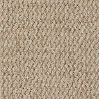 Berber Carpet | www.pixshark.com - Images Galleries With A ...