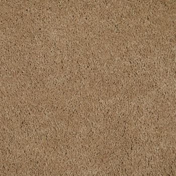 carpet styles empire today