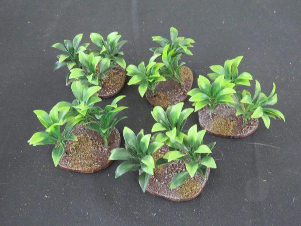 Jungle Plant 3