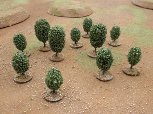 Orbicular Tree medium