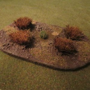 small swamp