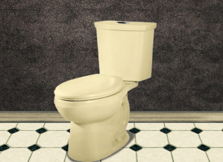 Top 5 Best Flushing Toilets of 2018 – The Complete Reviews