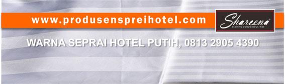 SEPRAI HOTEL PUTIH : APAKAH PENYEBABNYA PIHAK HOTEL MEMILIH WARNA PUTIH?