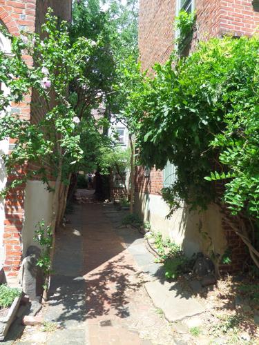 Elfreth's Alley Garden