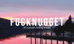 fucknugget definition - Fuck Nugget