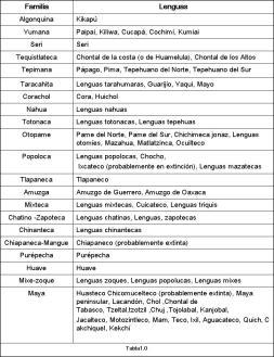 familias lenguas indígenas