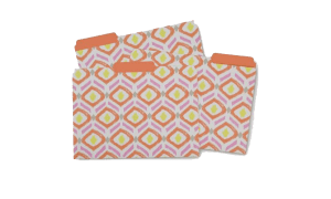 Office Candy sunrise key file folder