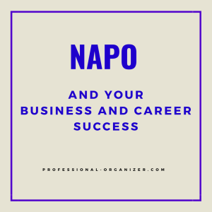 NAPO and your career and business success