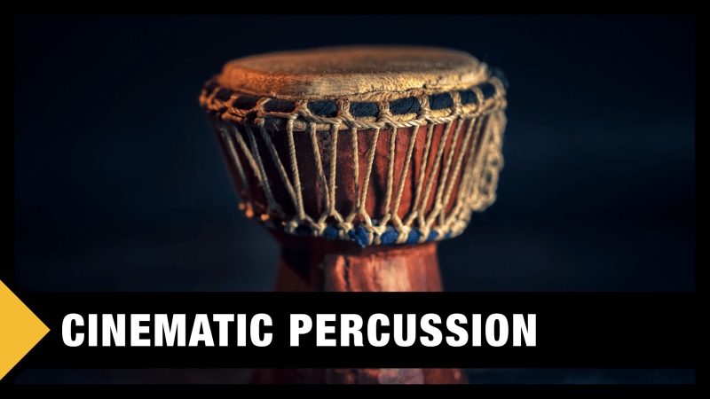 Best Cinematic Percussion VST Plugins & Sample Libraries