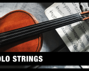 Best Solo Strings VST