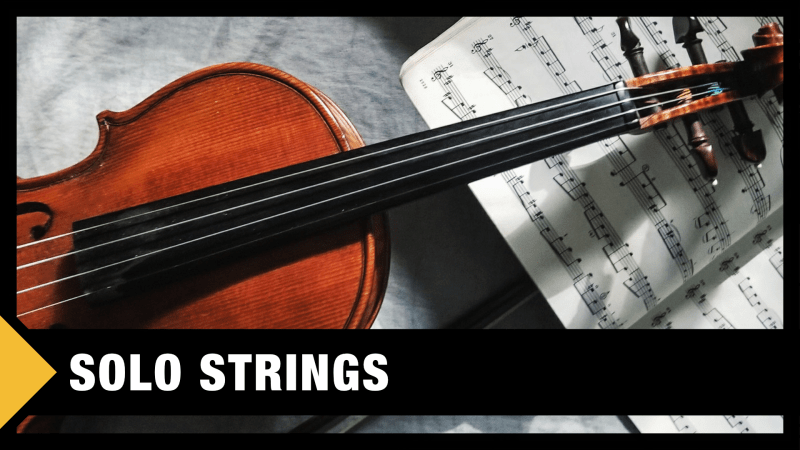 Best Solo Strings VST Plugins & Sample Libraries