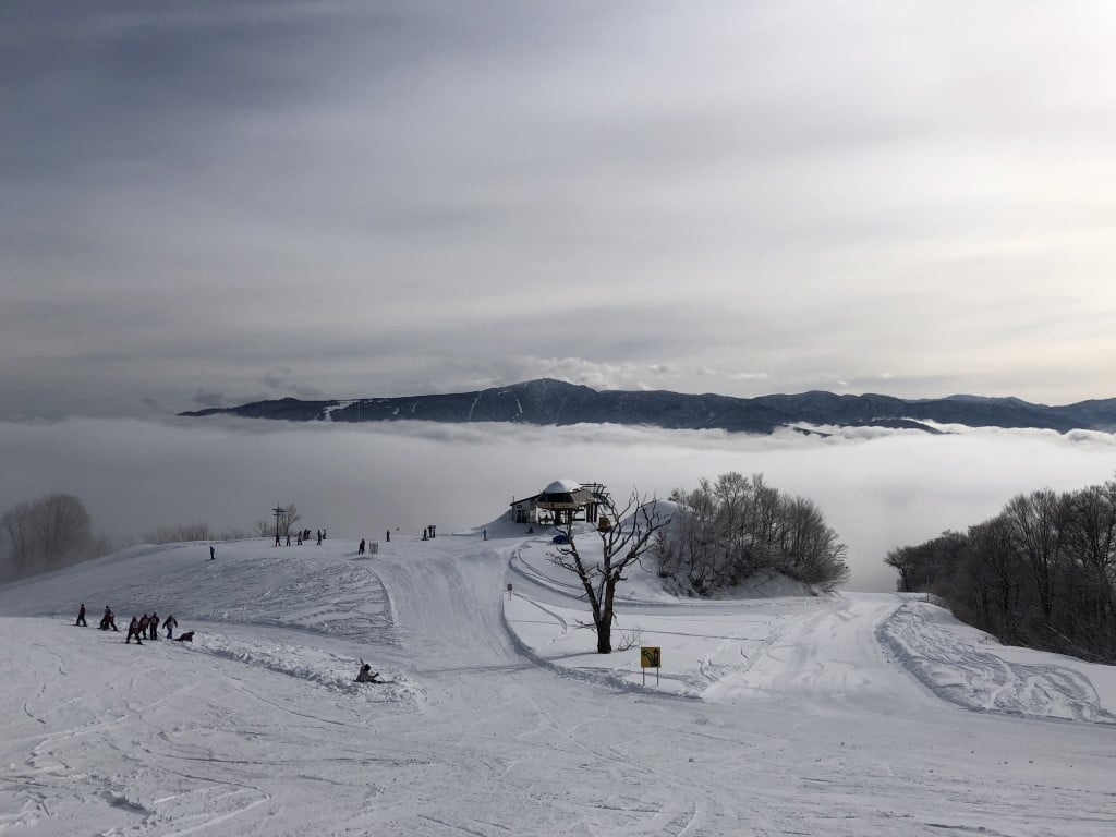 Snow-Report-2020-01-17-Togari-Onsen-Top