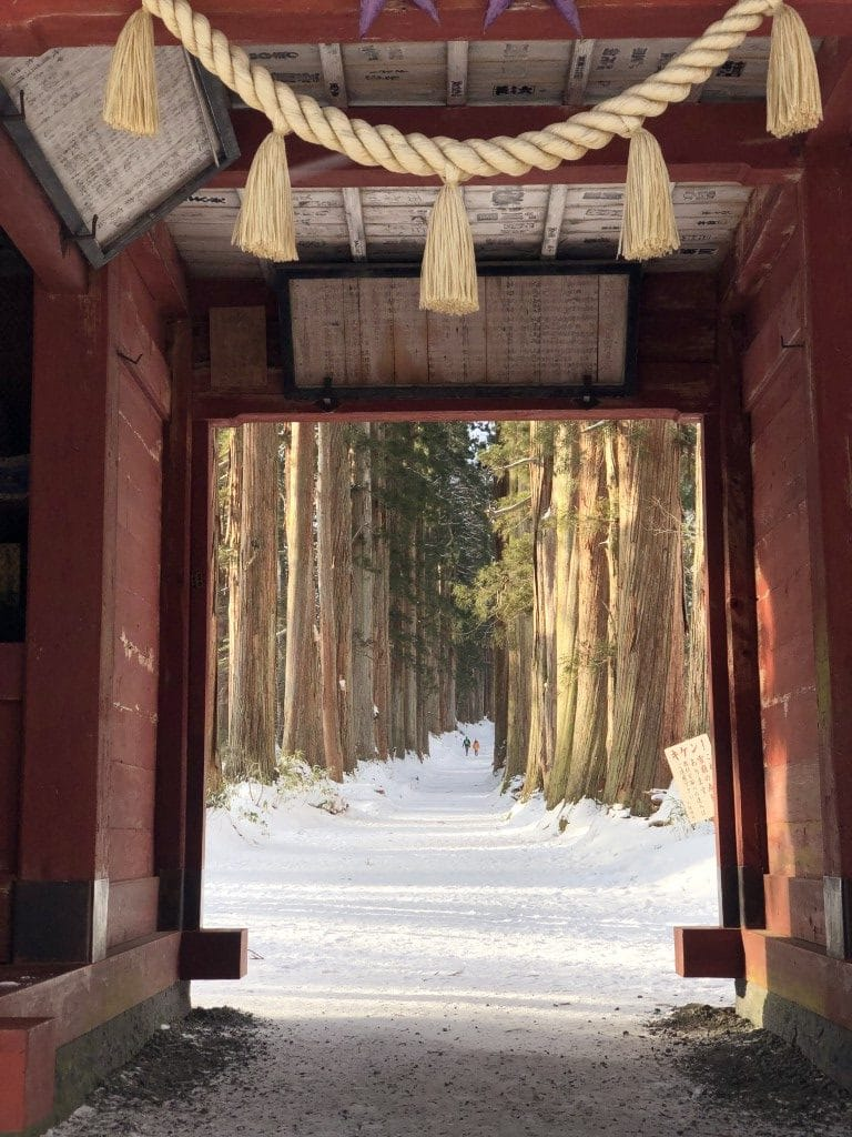 Snow Report 2020-01-20 Togakushi Shrine