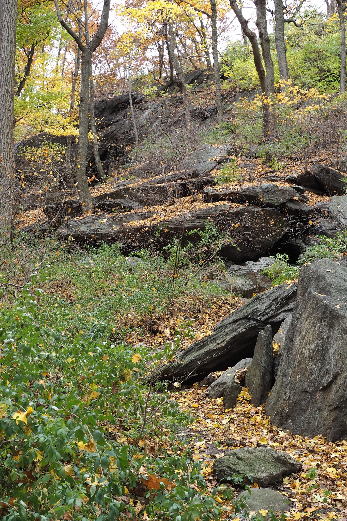 Indian Caves at Inwood Hill Park