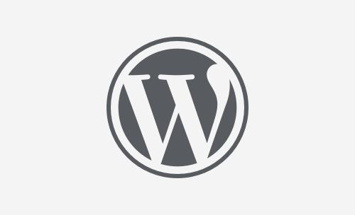 Guida per WordPress