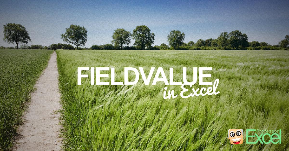 FIELDVALUE formula in Excel