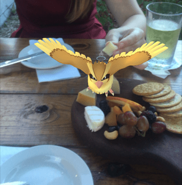 Pidgey Pokemon Go Eating Food