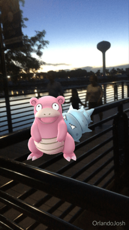 SlowBro Pokemon Go