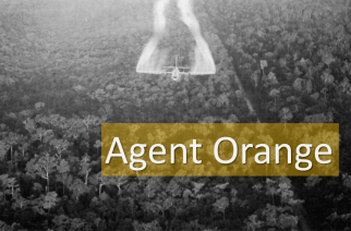 Wolves in the Sheep's Pen? Dow AgroScience & Agent Orange: War as Moral Hazard