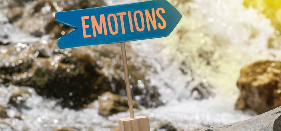 Emotions and Learning