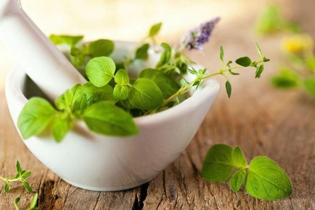 Produk Kosmetik 100% Organik Terbaik Di Pasaran