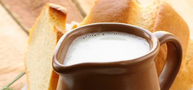 khasiat susu unta