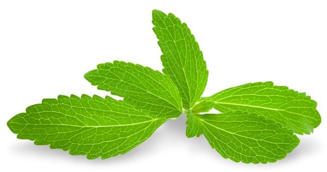 pemanis-stevia