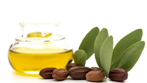 minyak jojoba dalam make up organik kanak - kanak