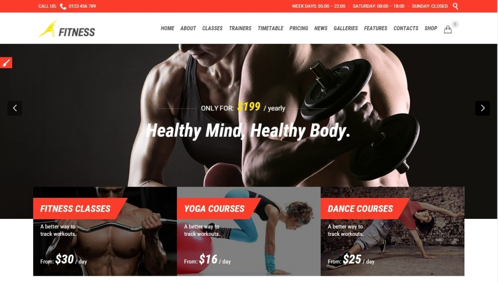 Fitness WordPress Themes -2015-may-30-005