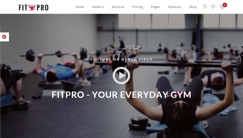 Fitness WordPress Themes -2015-may-30-008