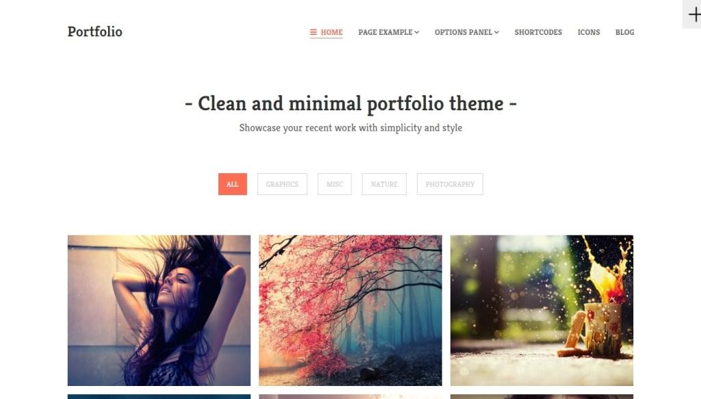 Best WordPress Portfolio Themes-2015-jun-18-030