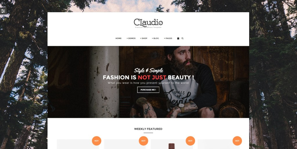 Best E-commerce WordPress Themes for Online Store and Shops 2016