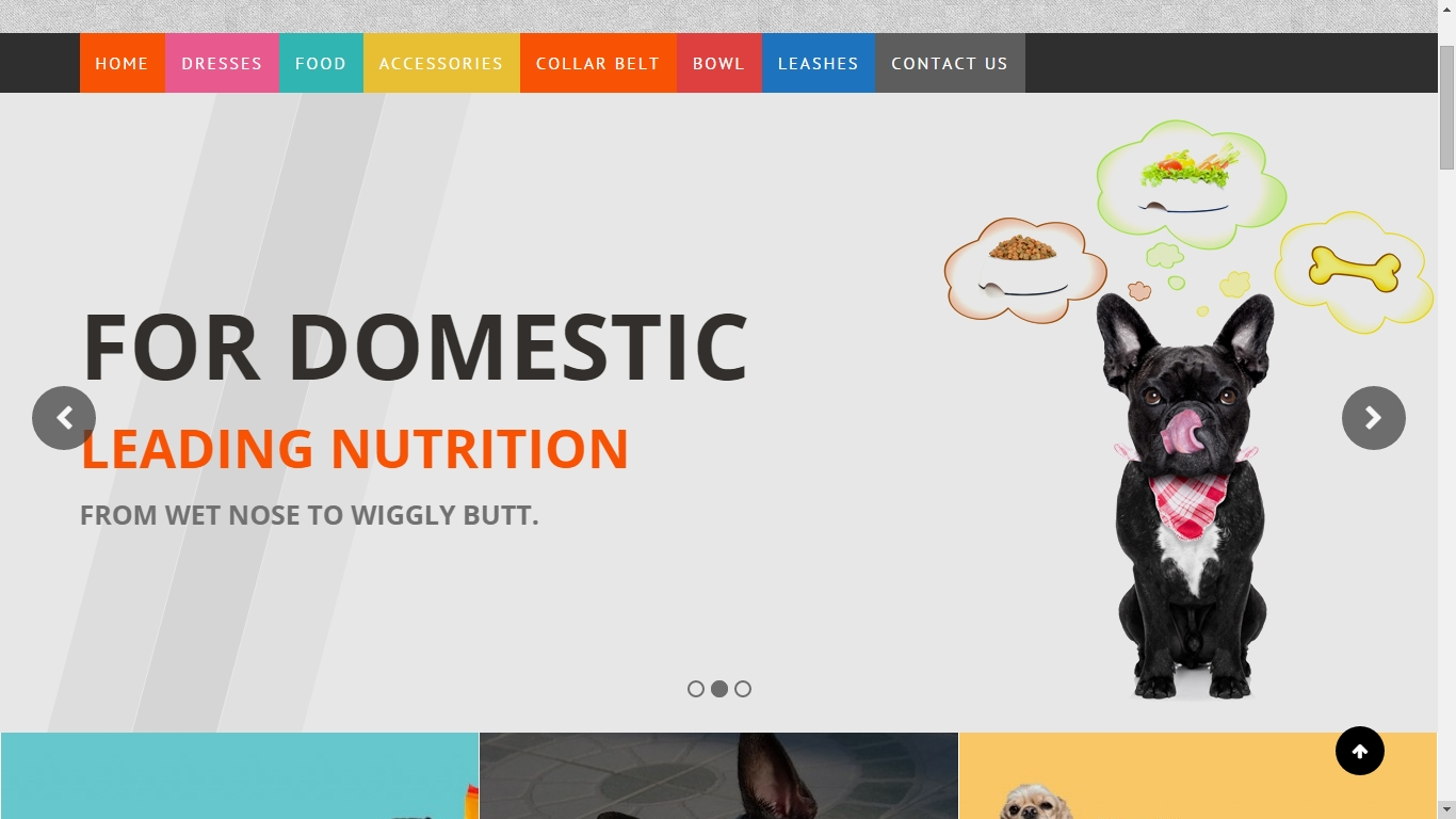 WordPress WooCommerce Theme for pets and vets