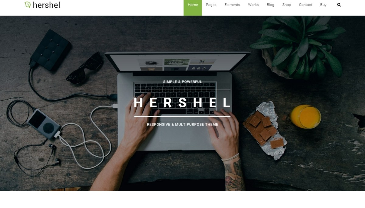 Best WordPress Themes for Business 2016