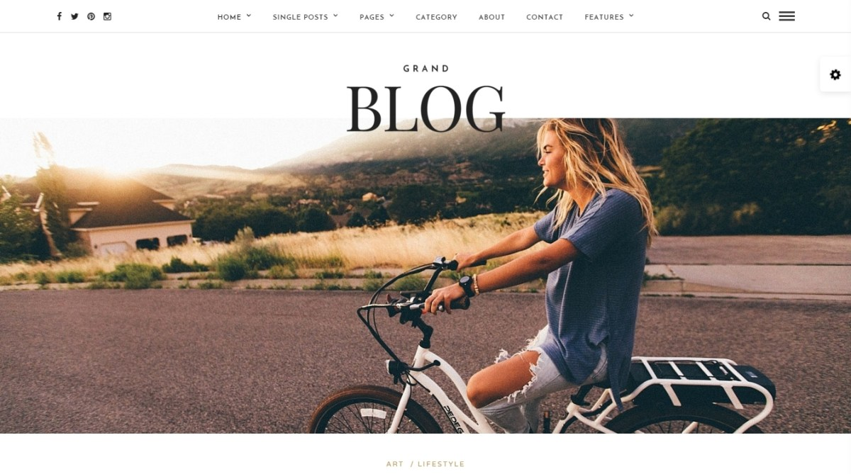 10+ Best Premium Wordpress Blog Themes 2016