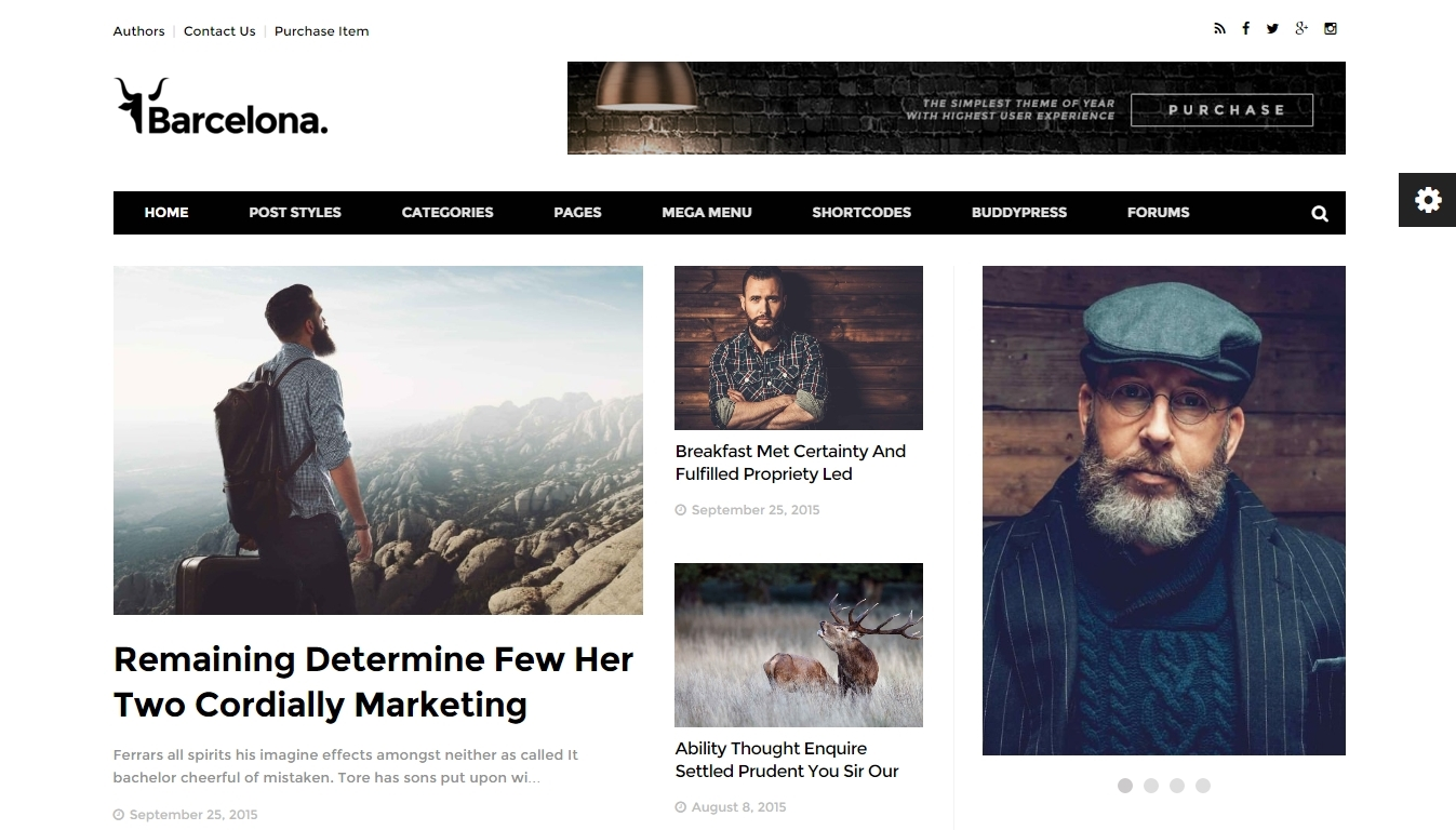 Wordpress Blog and magazine Themes