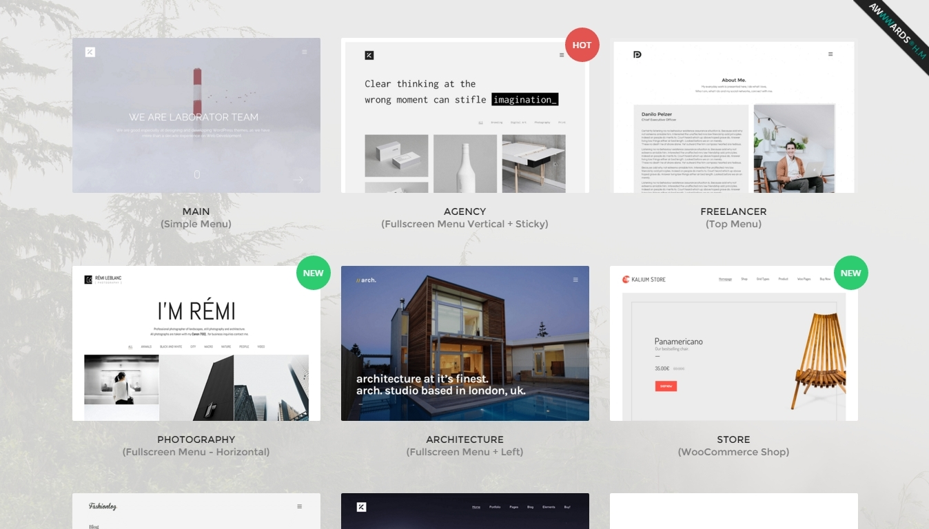 responsive WordPress themes for professionals