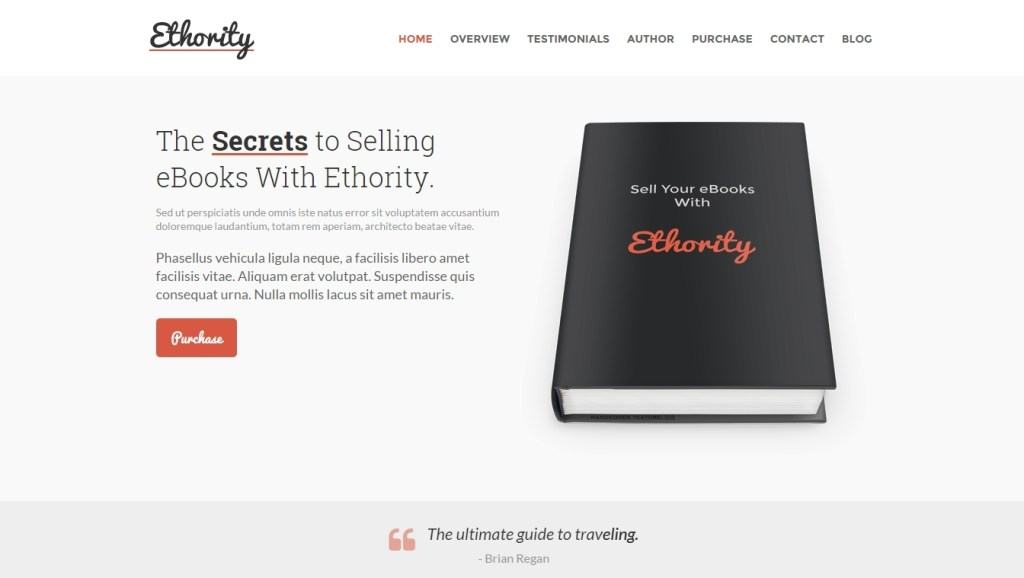 excellent WordPress themes for authors and book launch website