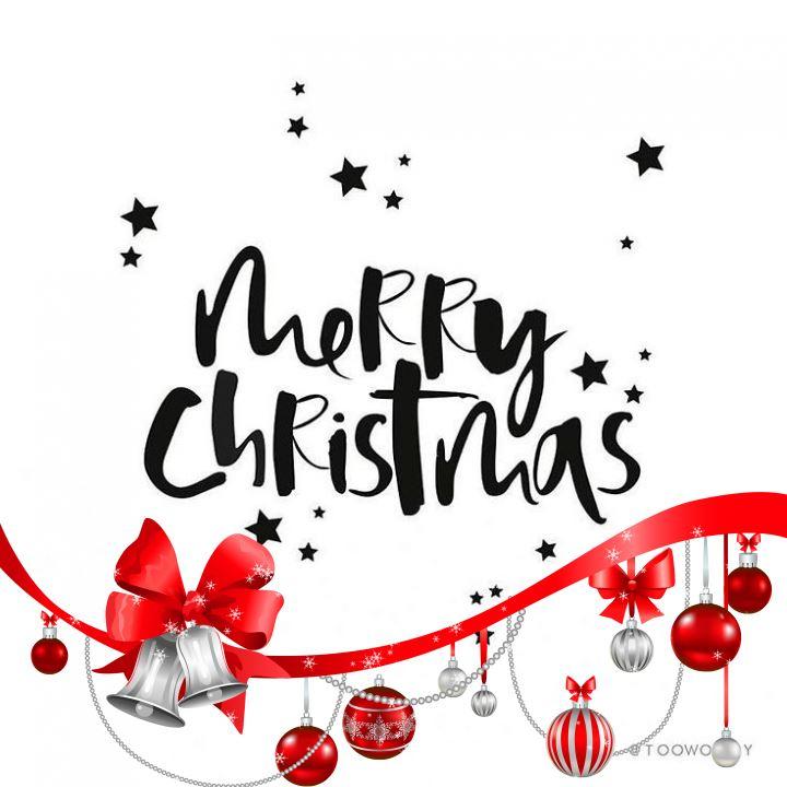 Toni Tails Merry Christmas Profile Frame