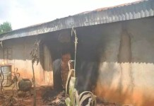 Man Lost His Properties For Killing Neighbour's Dog In Enugu