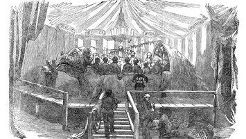 """The famous """"Dinner in the Iguanodon Model"""" was immortalised in this picture, published in Illustrated London News, 7 January 1854, p. 22."""