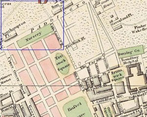 Map. Fairburn 1802, showing pasture land prior to definition of Euston Square asking the Paddington to Islington Road