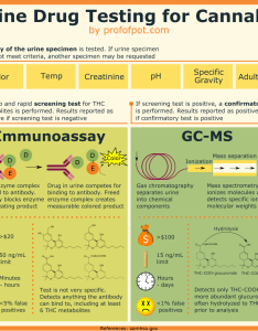 Infographic urine drug testing marijuana also guide to for with rh profofpot
