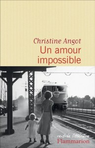 angot - un amour impossible
