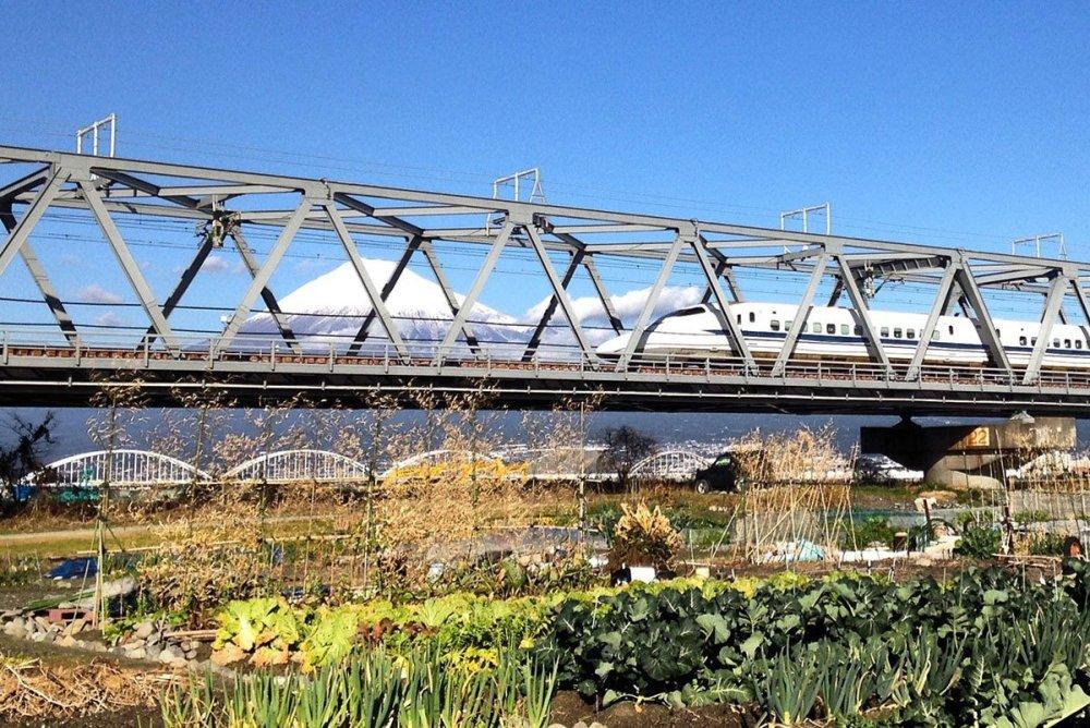Shinkansen y el Fuji