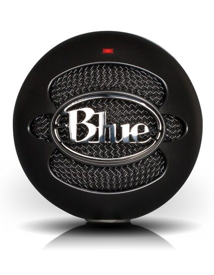 Image of budget microphone