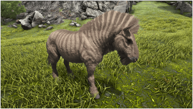 Ark Equus Guide Abilities Taming Food Saddle Breeding Drops Location Progametalk Click here to order your own game server at survivalservers.com. ark equus guide abilities taming