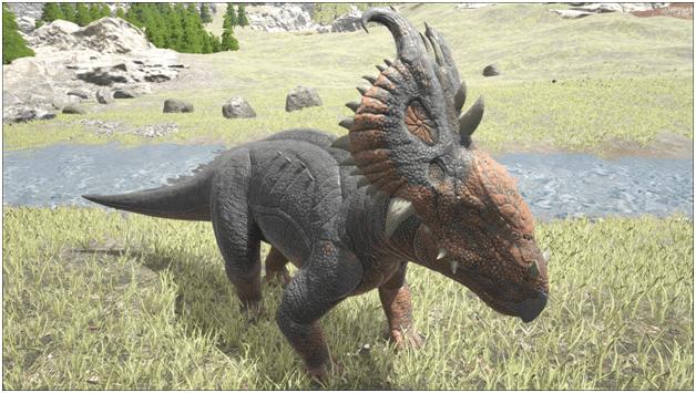 Ark Pachyrhinosaurus